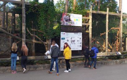 Interaktīvs un zinātkārs ceļojums Viesītes vidusskolas pamatskolēniem